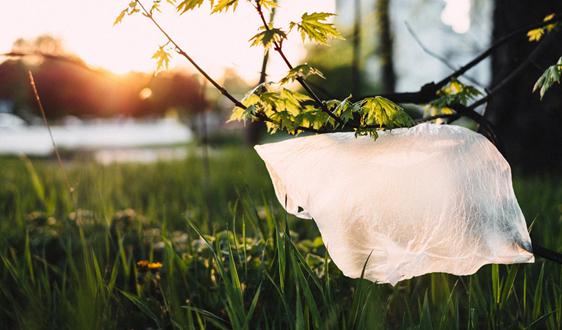 日政府拟2020年4月起向塑料袋收费