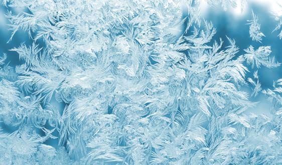 15个海关签署协议 建设冷链物流体系